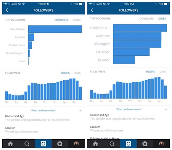 Instagram-Follower-and-Post-Analytics_2